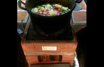 ecological stove