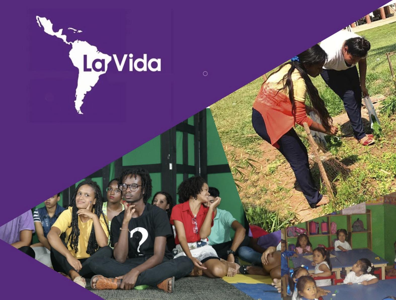 La Vida's Annual Report